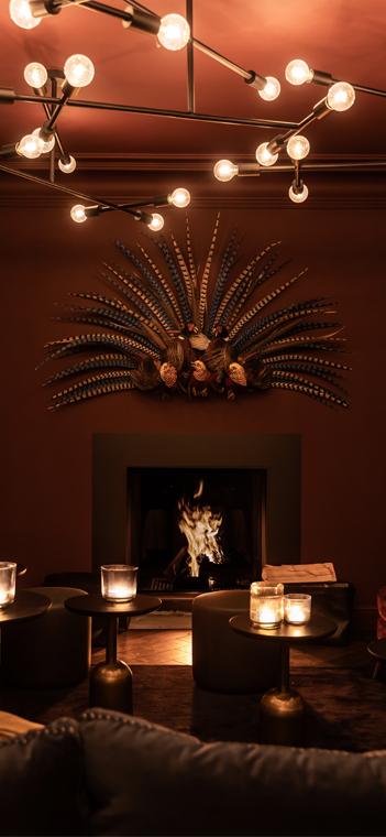 Kunstobjekt aus fünf präparierten Fasanen in der Lounge. Foto: Styn Vanderdeelen