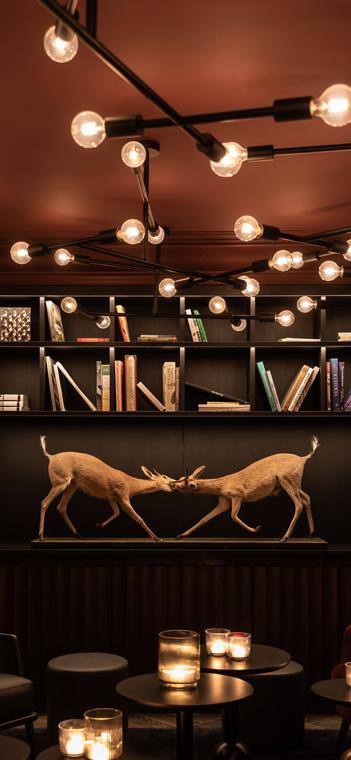 Zwei Jagdtrophäen und eine individuelle Deckenbeleuchtung in der Lounge. Foto: Katoo Peters