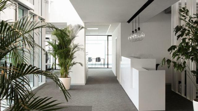 Studio Bocchi, Lichthof am Empfang