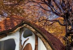 So könnte das erste 'EinBaumHaus' aussehen. Eine Crowdfunding-Kampagne auf startnext.de soll den Bau finanzieren. Rendering: einbaumhaus.at