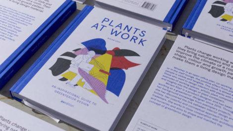 Plants at Work, Pflanzen im Büro, Miriam Köpf