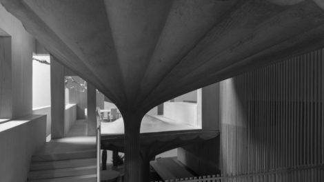 Organisch geformte Betonstützen im Haus Nr. 75 von Omer Arbel