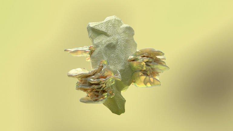b-ikea-virtual-greenhouse_Fungarium_Soderstrom.jpg
