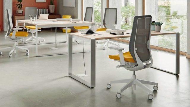md0520_PRO-Office_Profim.jpg