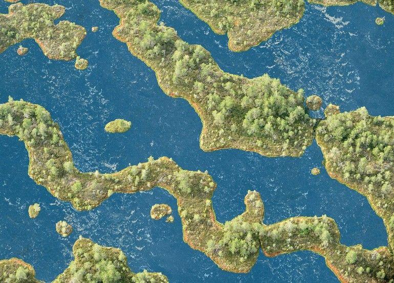 Aerial_view_of_bog,_Kemeri_National_Park,_Latvia,_June_2009