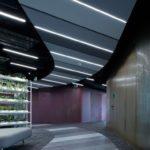 reaktor-livesport-offices-boysplaynice-09.jpg